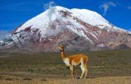 ★ El Chimborazo – La Foto que dio la Vuelta al Mundo