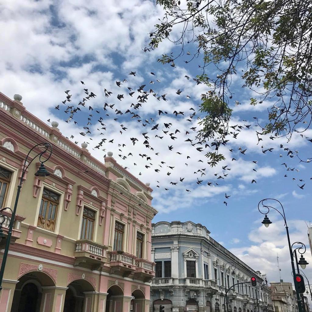 Riobamba Señorial