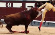 🔴 #VIDEO Torero recibe escalofriante cornada en el recto