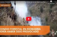 Video: INCENDIO forestal ha consumido varias hectáreas en la vía Guaranda - Riobamba
