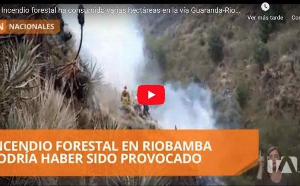 Video: INCENDIO forestal ha consumido varias hectáreas en la vía Guaranda - Riobamba