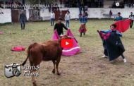 Video: TOROS POPULARES CATEQUILLA CHAMBO.