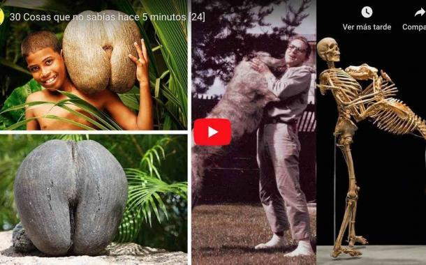 Video: 30 Cosas que no sabías hace 5 minutos