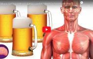 Video: Mira lo que le sucede a tu cuerpo si bebes CERVEZA TODOS LOS DÍAS🍺
