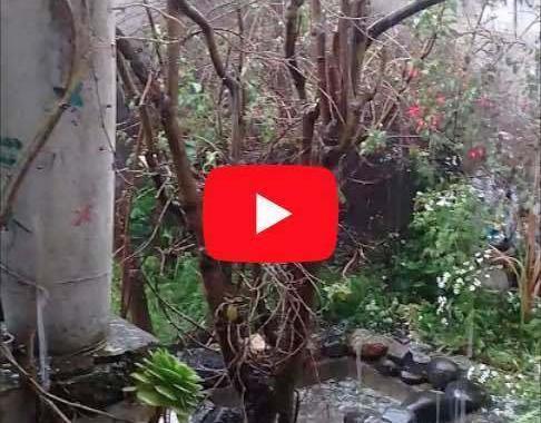 🔴 VIDEO | Fuerte granizada en Riobamba 21 noviembre 2019