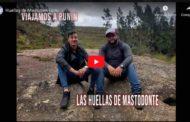 🔴 VIDEO | Huellas de Mamut en Licto