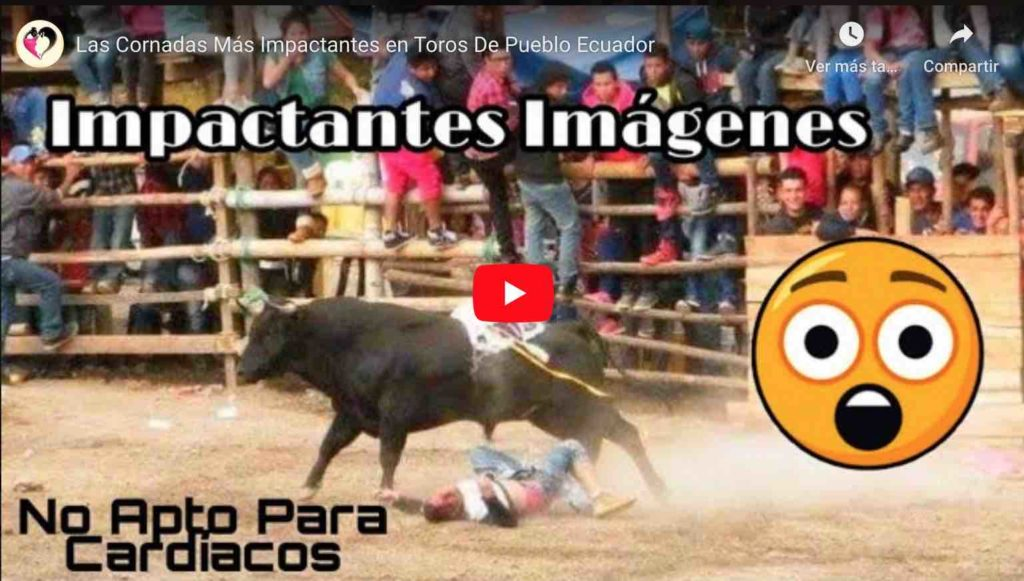 Video: Las Cornadas más Impactantes en Toros De Pueblo Ecuador (Fuertes Imágenes)